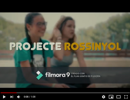 Necessitem la teva ajuda: el projecte rossinyol entre els 20 projectes finalistes del VIII Premis Al Voluntariat Universitari